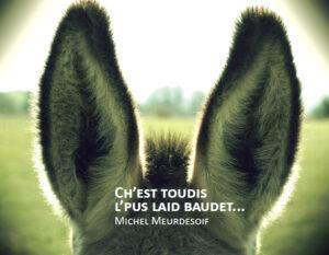 """""""Ch'est toudis l'pus laid baudet"""""""